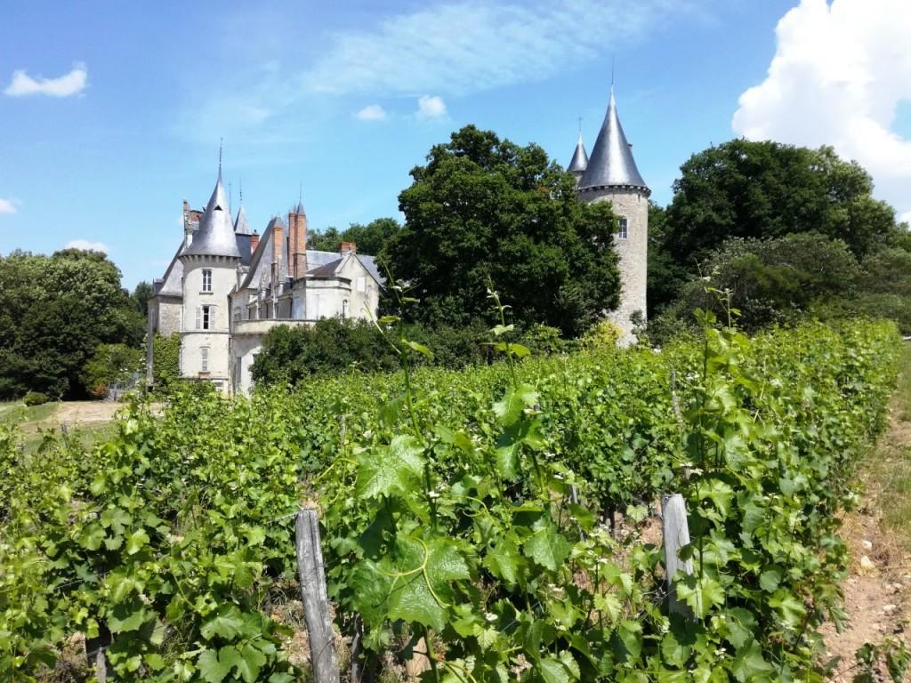 Le château de Tracy à Pouilly-sur-Loire, un vignoble de 33 ha en appellation Pouilly Fumé (Photo FC)