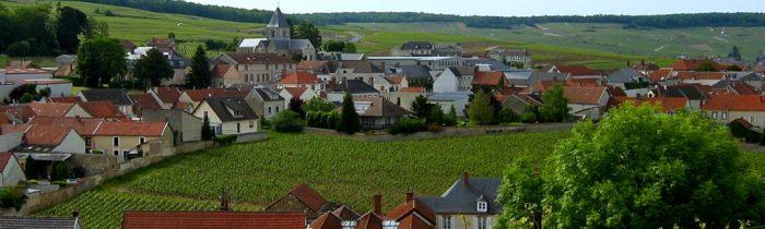 Clos du Mesnil