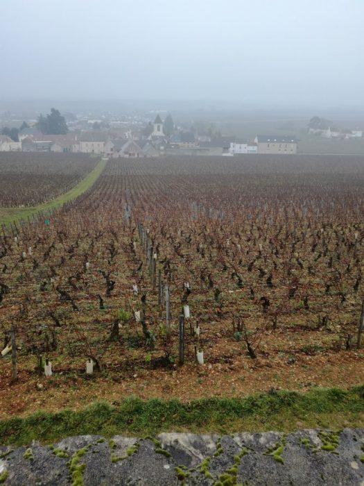 Clos de Tart et Clos des Lambrays (Photo FC)