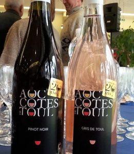Côtes de Toul (AOC), Lorraine, 20 ans déjà !