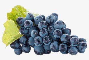 Le kyoho, une variété de raisins de table, couvre 365 000 ha dont 90 % se trouvent en Chine.