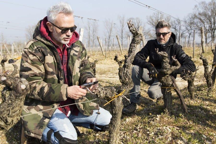 Les maîtres tailleurs Simonit & Sirch formrnt depuis 2003 des viticulteurs à la taille de la vigne respectueuse des flux de sève tout en s'adaptant aux spécificités régionales des modes de conduite