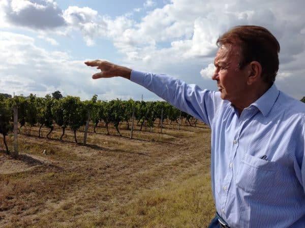 Henry Marionnet au dessus de La Chamoise, en bordure de ses vignes de sauvignon et gamay (Photo FC)