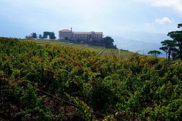 Au milieu des vignes, le monastère de Mar Moussa dans le Metn (Mont-Liban) à l'est de Beyrouth. Y vit une communauté de 7 moines maronites cultivant la vigne à 1200 m d'altitude sur un sol argilo ferreux. L'humidité il est forte, en raison notamment d'importants écarts de température entre le jour et la nuit. On y produit un vin de terroir bio issu à 50 % de cabernet sauvignon, 35 % de syrah et 15 % de petit verdot et vieilli 24 mois en barriques bordelaises sous l'égide d'Adyar, la coopérative monastique.