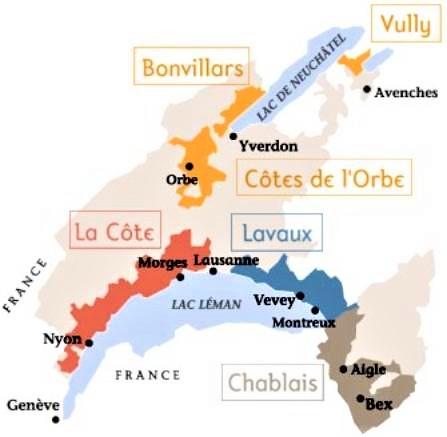 Suisse, nord du lac Léman, là où sont les grands terroirs du chasselas (fendant).