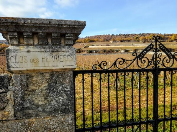 Meursault Clos des Perrières, parcelle de 1 ha de ce premier cru. Il est exploité en monopole par le domaine Grivault depuis 1873 (Photo FC
