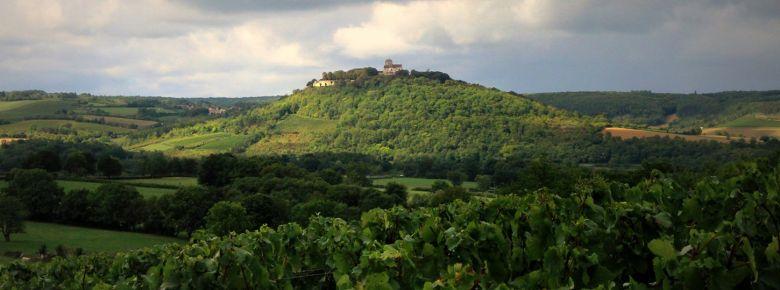 Vézelay, vignoble de 256 ha est devenu en 2017, la 44e et plus récente AOC village de Bourgogne (pour ses vins tranquilles blancs).