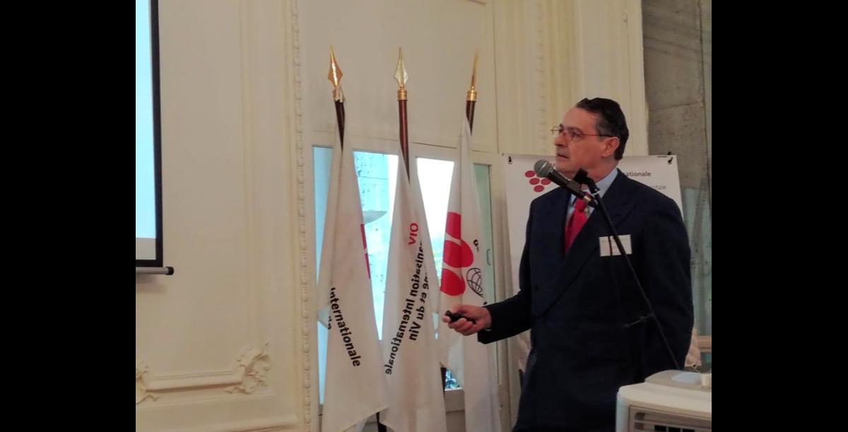 OIV Pau Roca nouveau directeur de l'OIV lors de la conférence de presse sur la conjoncture mondiale du vin en 2018