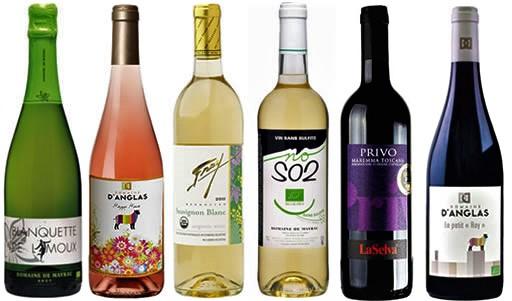 Vin nature ou l'incroyable succès mondial du vin naturel «le vin nu»