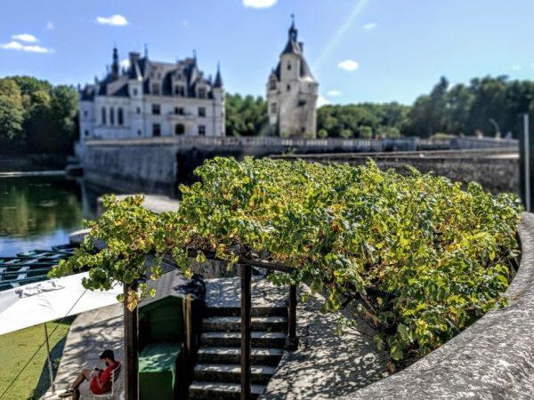 A l'angle du Jardin de Diane de Poitiers, face à la chancellerie, sous l'ombrage d'une vigne, l'embarcadère pour des promenades sur le Cher (Photos FC)