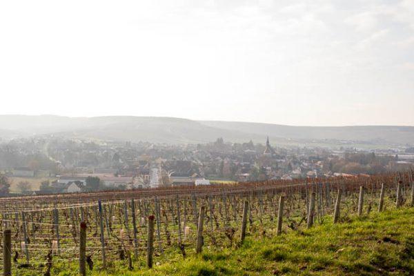 Chablis AOC (Bourgogne)